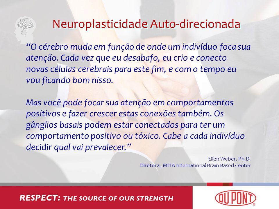 Neuroplasticidade Auto-direcionada O cérebro muda em função de onde um indivíduo foca sua atenção. Cada vez que eu desabafo, eu crio e conecto novas c