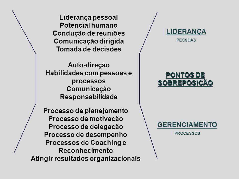 Liderança pessoal Potencial humano Condução de reuniões Comunicação dirigida Tomada de decisões Auto-direção Habilidades com pessoas e processos Comun