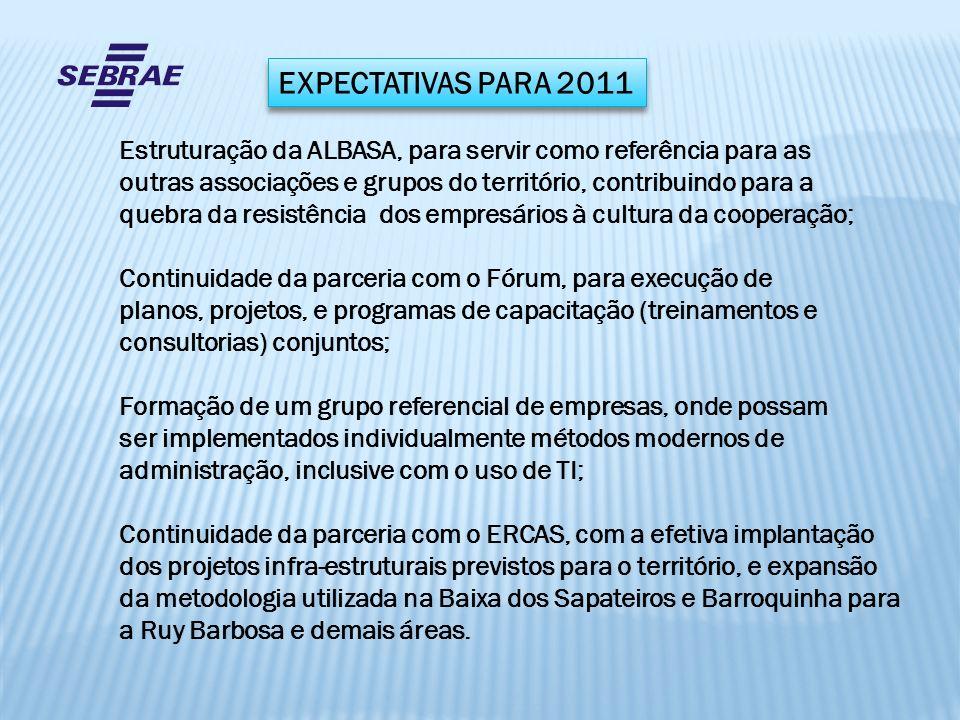 EXPECTATIVAS PARA 2011 Estruturação da ALBASA, para servir como referência para as outras associações e grupos do território, contribuindo para a queb