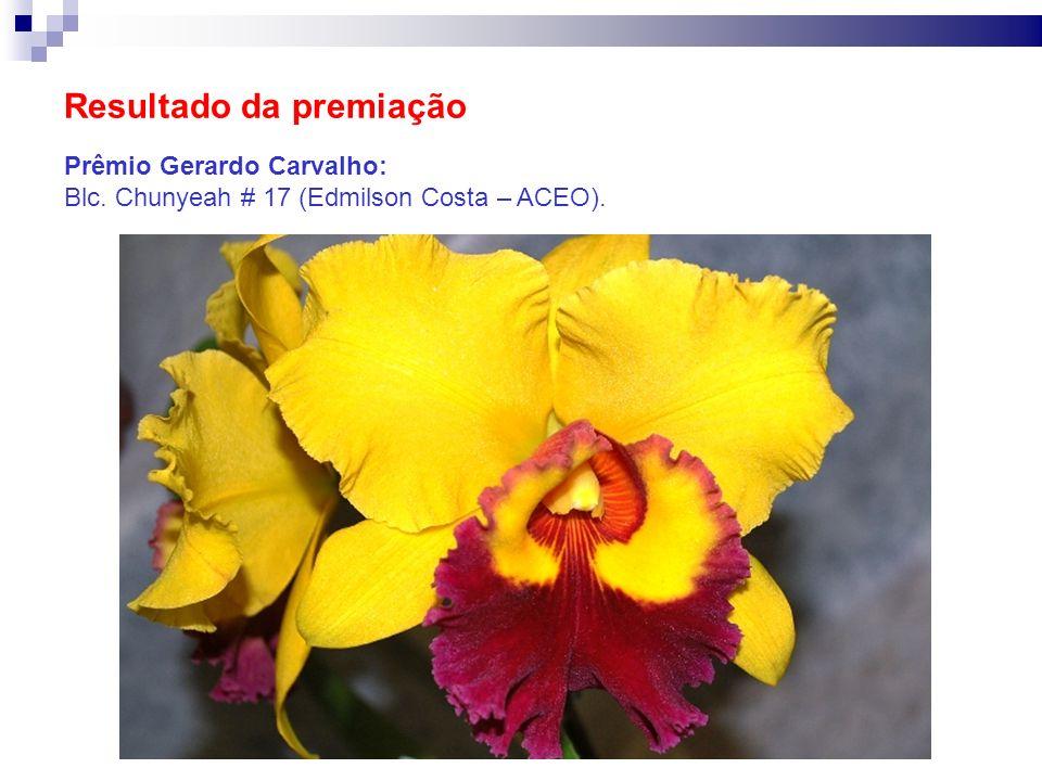 Resultado da premiação Prêmio Gerardo Carvalho: Blc. Chunyeah # 17 (Edmilson Costa – ACEO).