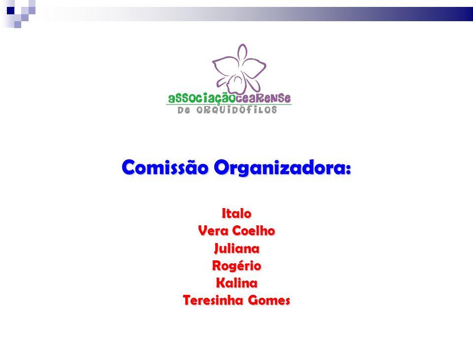 Comissão Organizadora: Italo Vera Coelho JulianaRogérioKalina Teresinha Gomes