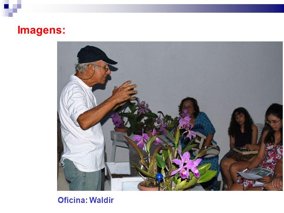 Imagens: Oficina: Waldir