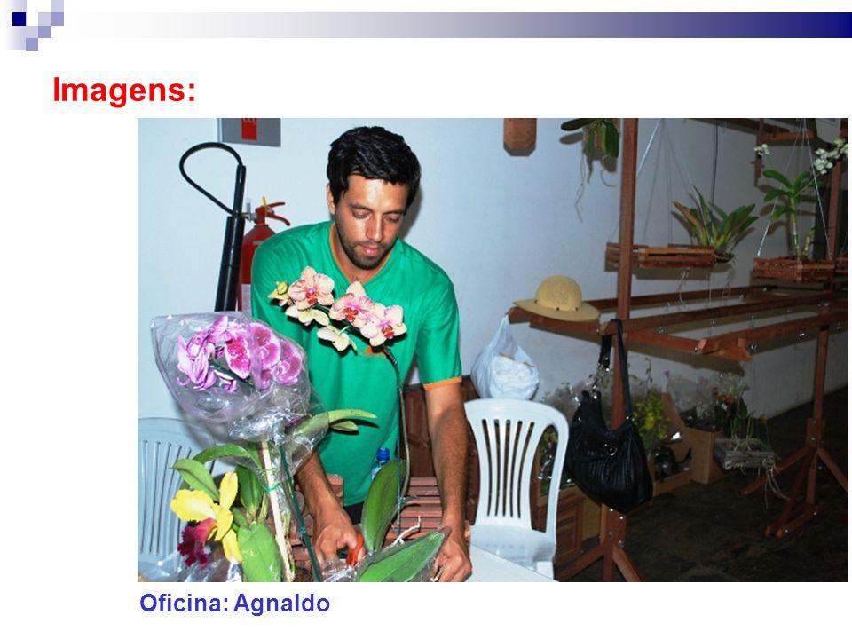Imagens: Oficina: Agnaldo