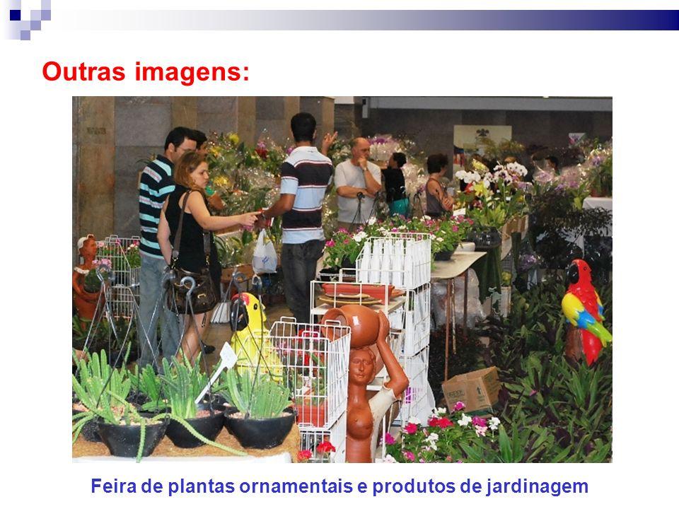 Outras imagens: Feira de plantas ornamentais e produtos de jardinagem