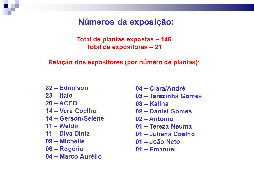 Números da exposição: 32 – Edmilson 23 – Italo 20 – ACEO 14 – Vera Coelho 14 – Gerson/Selene 11 – Waldir 11 – Diva Diniz 09 – Michelle 06 – Rogério 04