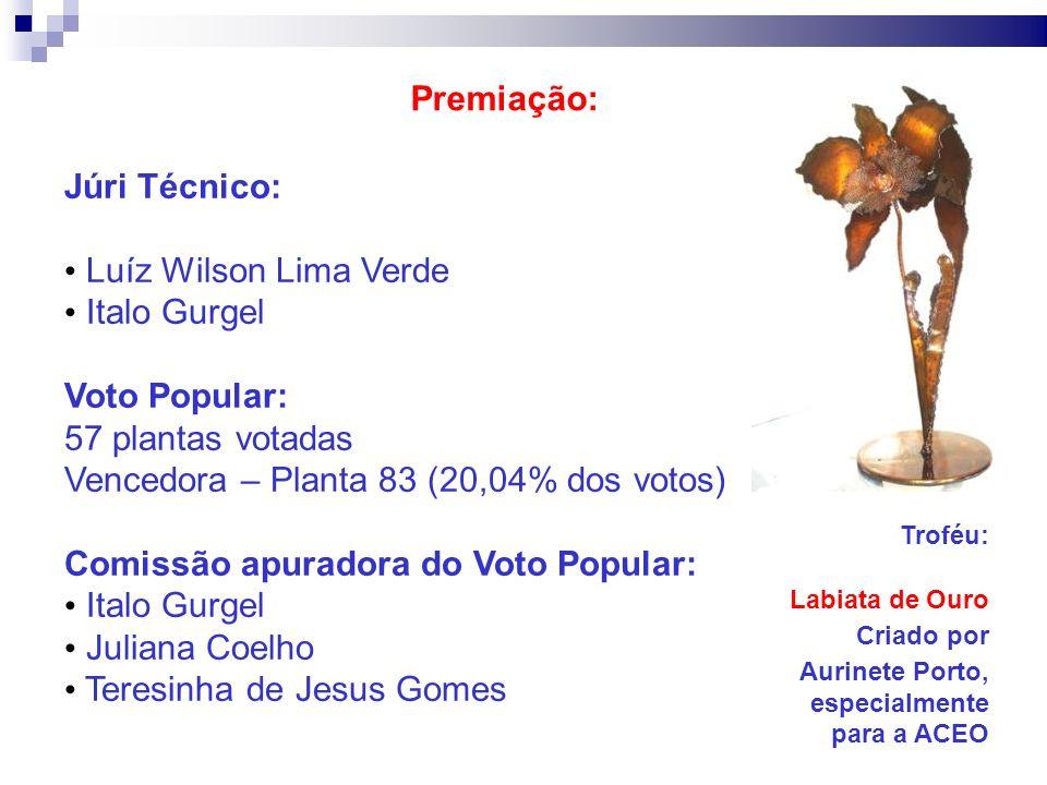 Premiação: Júri Técnico: Luíz Wilson Lima Verde Italo Gurgel Voto Popular: 57 plantas votadas Vencedora – Planta 83 (20,04% dos votos) Comissão apurad