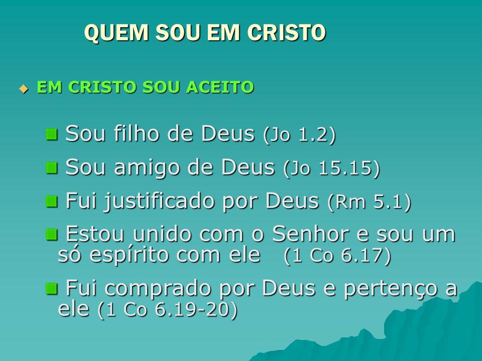 EM CRISTO SOU ACEITO EM CRISTO SOU ACEITO Sou filho de Deus (Jo 1.2) Sou filho de Deus (Jo 1.2) Sou amigo de Deus (Jo 15.15) Sou amigo de Deus (Jo 15.