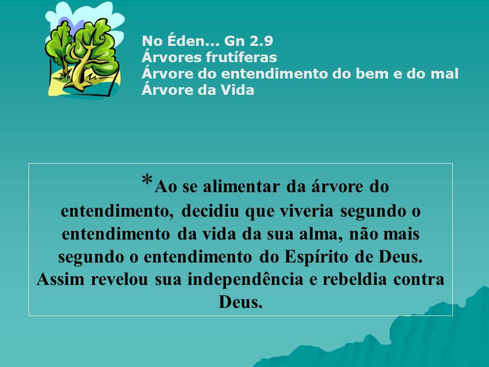 LIBERTAÇÃO ARREPENDIMENTO PERDÃO CONFISSÃORESTITUIÇÃO