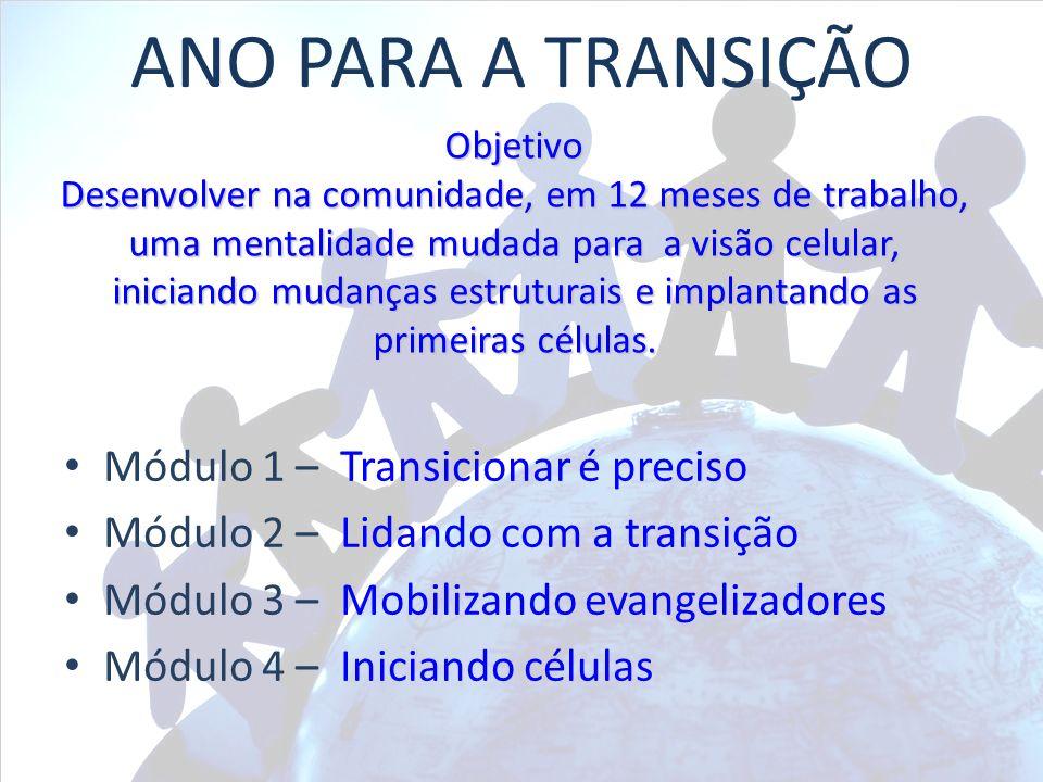 ANO PARA A TRANSIÇÃO Módulo 1 – Transicionar é preciso Módulo 2 – Lidando com a transição Módulo 3 – Mobilizando evangelizadores Módulo 4 – Iniciando