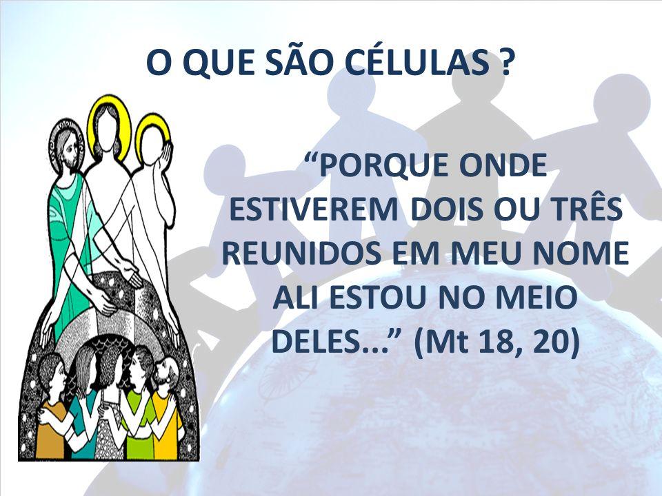 PORQUE ONDE ESTIVEREM DOIS OU TRÊS REUNIDOS EM MEU NOME ALI ESTOU NO MEIO DELES... (Mt 18, 20) O QUE SÃO CÉLULAS ?