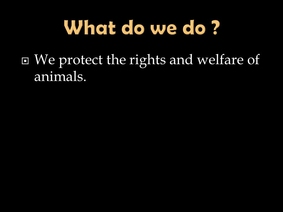 We protect the rights and welfare of animals.