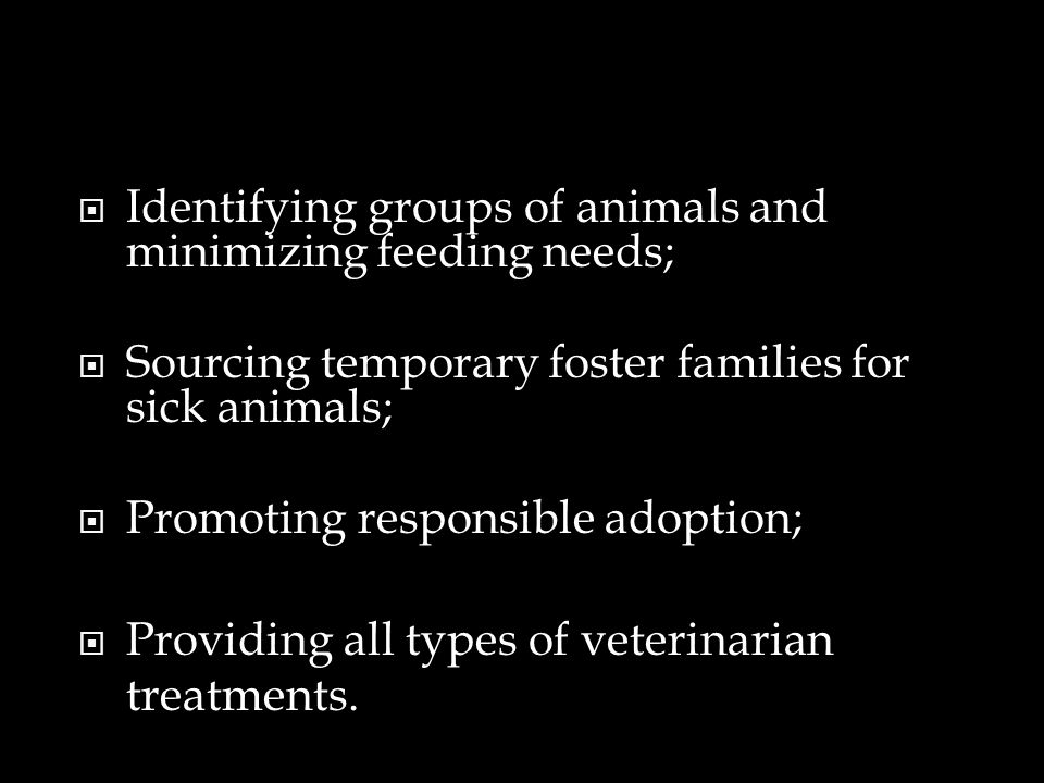 Identifying groups of animals and minimizing feeding needs; Sourcing temporary foster families for sick animals; Promoting responsible adoption; Provi