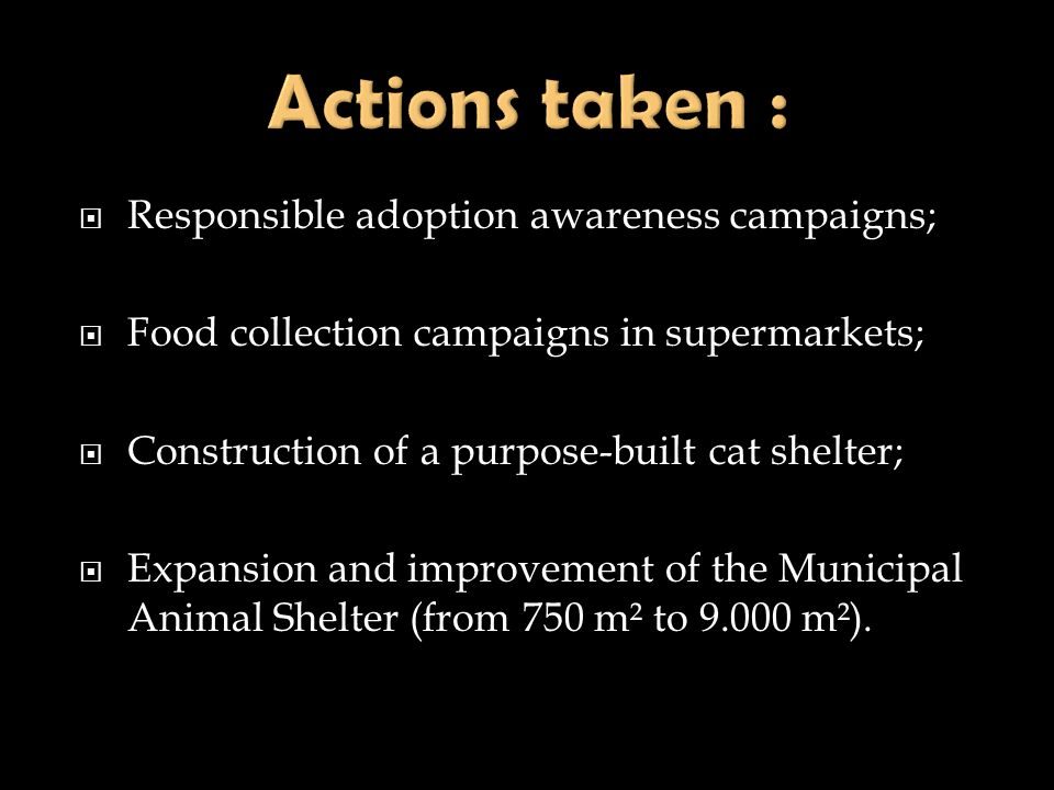 Responsible adoption awareness campaigns; Food collection campaigns in supermarkets; Construction of a purpose-built cat shelter; Expansion and improv