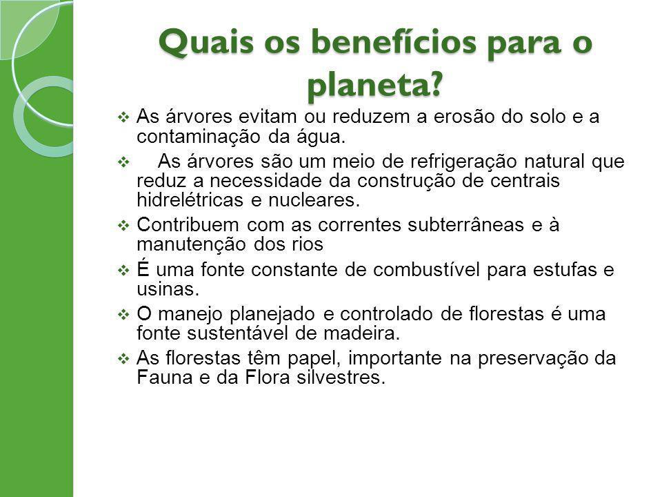 Quais os benefícios para o planeta? As árvores evitam ou reduzem a erosão do solo e a contaminação da água. As árvores são um meio de refrigeração nat