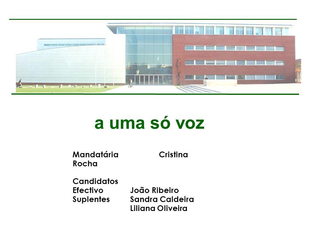 a uma só voz MandatáriaCristina Rocha Candidatos EfectivoJoão Ribeiro SuplentesSandra Caldeira Liliana Oliveira