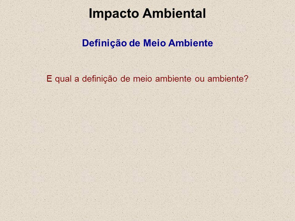 E qual a definição de meio ambiente ou ambiente? Impacto Ambiental Definição de Meio Ambiente