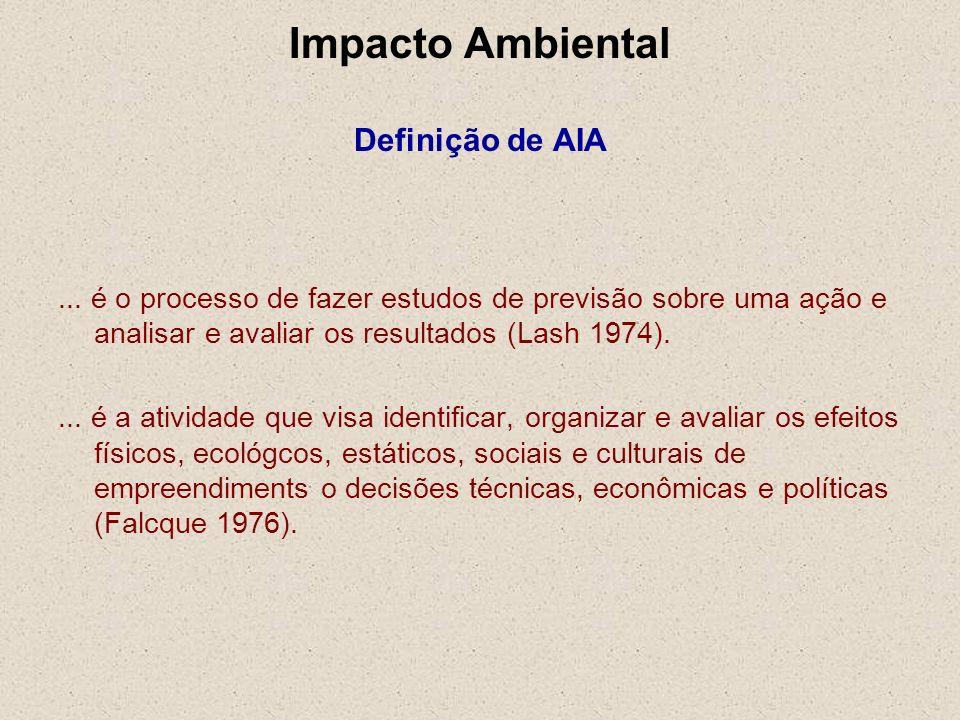 ... é o processo de fazer estudos de previsão sobre uma ação e analisar e avaliar os resultados (Lash 1974).... é a atividade que visa identificar, or