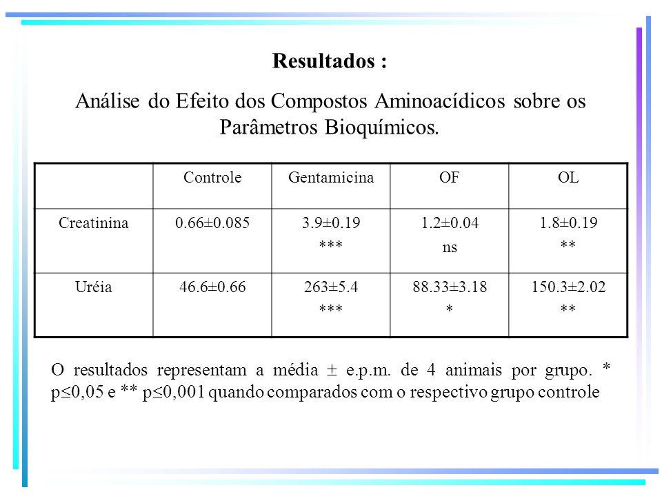 Resultados : Análise do Efeito dos Compostos Aminoacídicos sobre os Parâmetros Bioquímicos. ControleGentamicinaOFOL Creatinina0.66±0.0853.9±0.19 *** 1