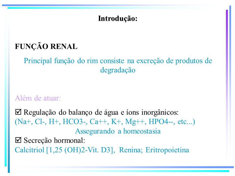 Introdução: FUNÇÃO RENAL Principal função do rim consiste na excreção de produtos de degradação Além de atuar: Regulação do balanço de água e íons ino