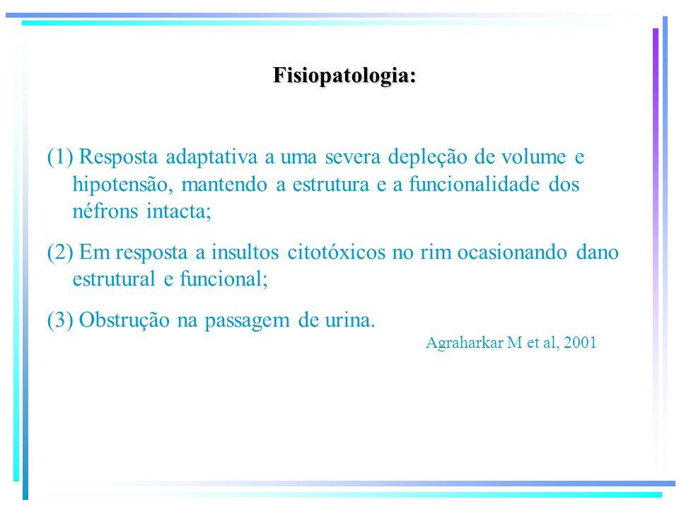 Fisiopatologia: (1) Resposta adaptativa a uma severa depleção de volume e hipotensão, mantendo a estrutura e a funcionalidade dos néfrons intacta; (2)