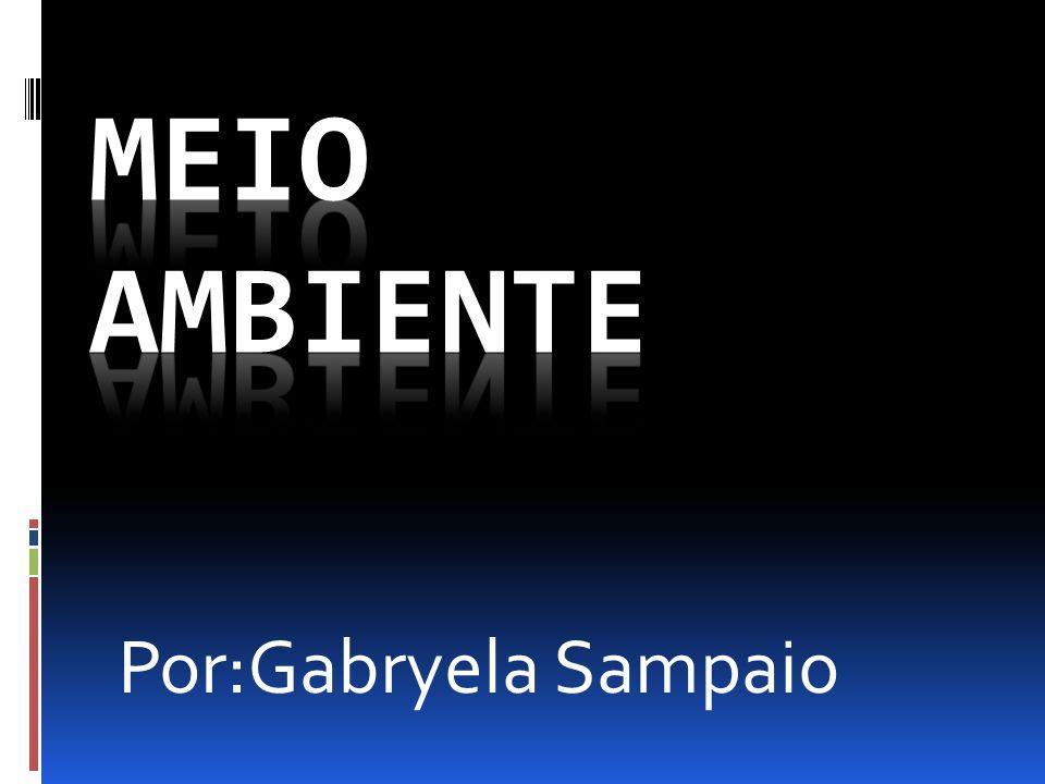 Por:Gabryela Sampaio