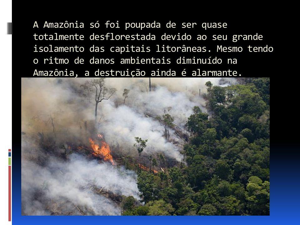 A Amazônia só foi poupada de ser quase totalmente desflorestada devido ao seu grande isolamento das capitais litorâneas. Mesmo tendo o ritmo de danos