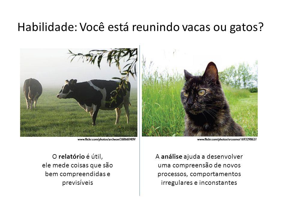 Habilidade: Você está reunindo vacas ou gatos.