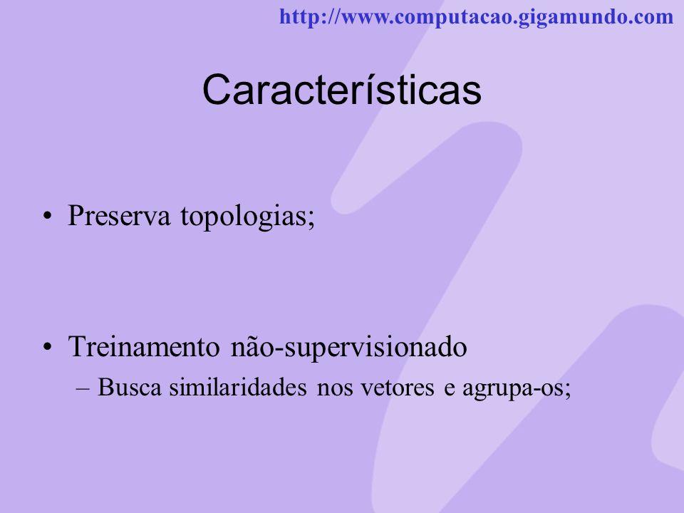http://www.computacao.gigamundo.com Características Preserva topologias; Treinamento não-supervisionado –Busca similaridades nos vetores e agrupa-os;