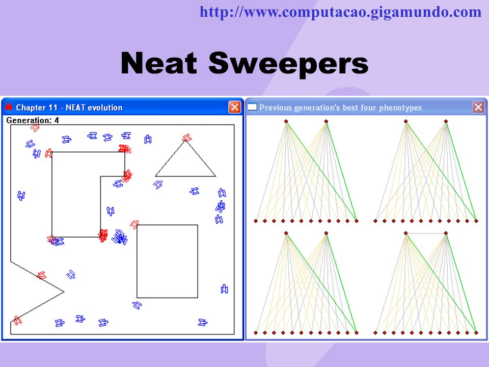 http://www.computacao.gigamundo.com Neat Sweepers