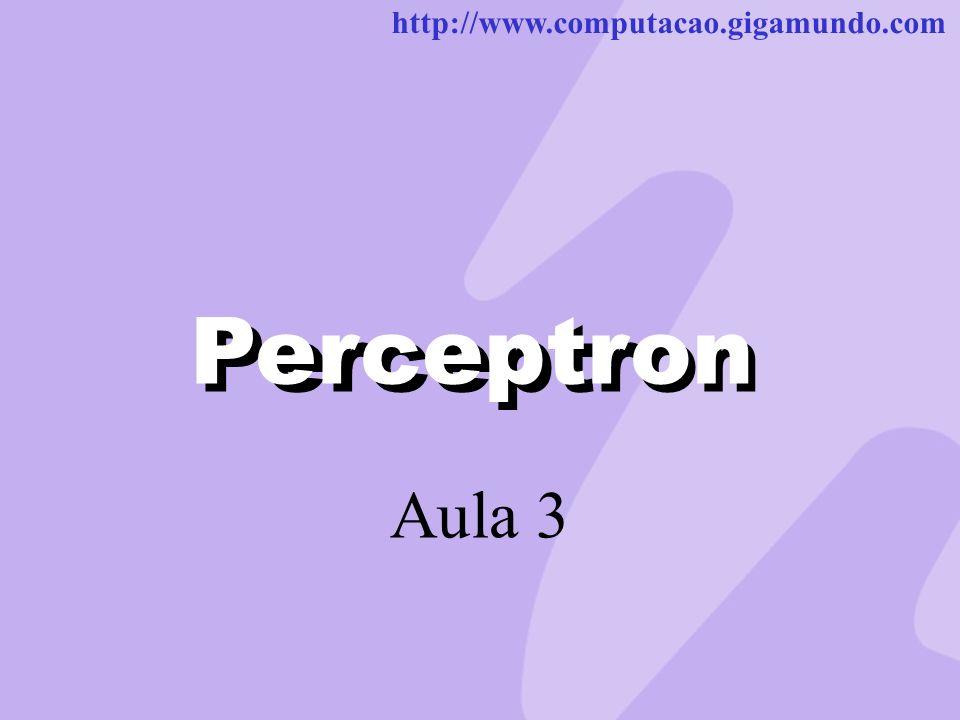http://www.computacao.gigamundo.com Perceptron Aula 3 Perceptron