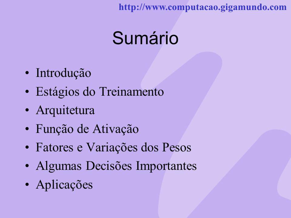 http://www.computacao.gigamundo.com Sumário Introdução Estágios do Treinamento Arquitetura Função de Ativação Fatores e Variações dos Pesos Algumas De