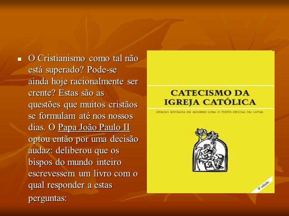 Ele confiou-me (Cardeal Joseph Ratzinger) a tarefa de coordenar o trabalho dos bispos e de vigiar a fim de que das suas contribuições nascesse um livro – quero dizer, um livro verdadeiro e não uma simples justaposição de uma multiplicidade de textos.