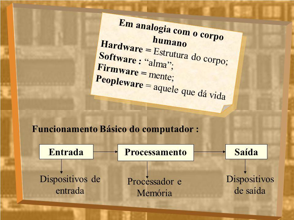 Em analogia com o corpo humano Hardware = Estrutura do corpo; Software : alma; Firmware = mente; Peopleware = aquele que dá vida Em analogia com o cor