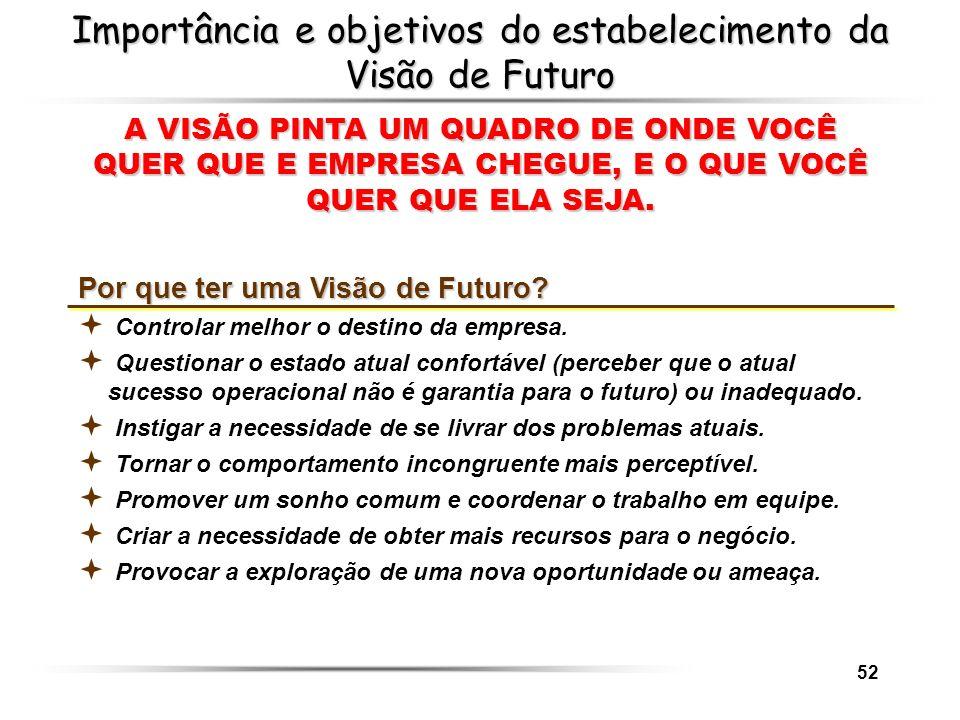 52 Importância e objetivos do estabelecimento da Visão de Futuro A VISÃO PINTA UM QUADRO DE ONDE VOCÊ QUER QUE E EMPRESA CHEGUE, E O QUE VOCÊ QUER QUE