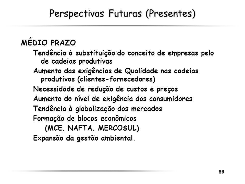 86 Perspectivas Futuras (Presentes) MÉDIO PRAZO Tendência à substituição do conceito de empresas pelo de cadeias produtivas Aumento das exigências de