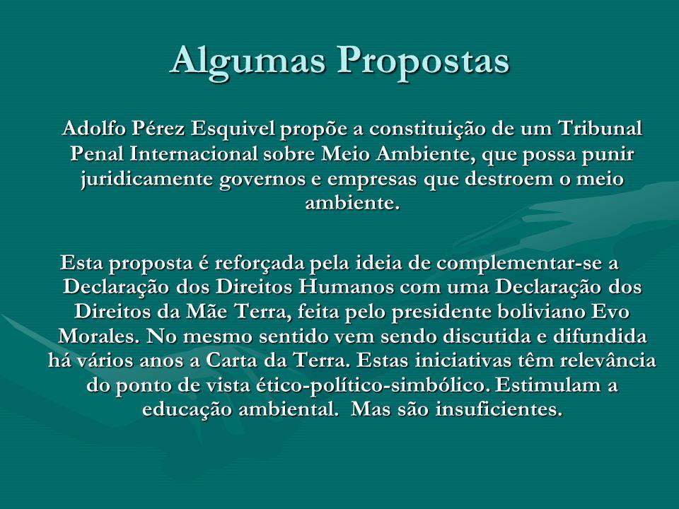 Algumas Propostas Adolfo Pérez Esquivel propõe a constituição de um Tribunal Penal Internacional sobre Meio Ambiente, que possa punir juridicamente go