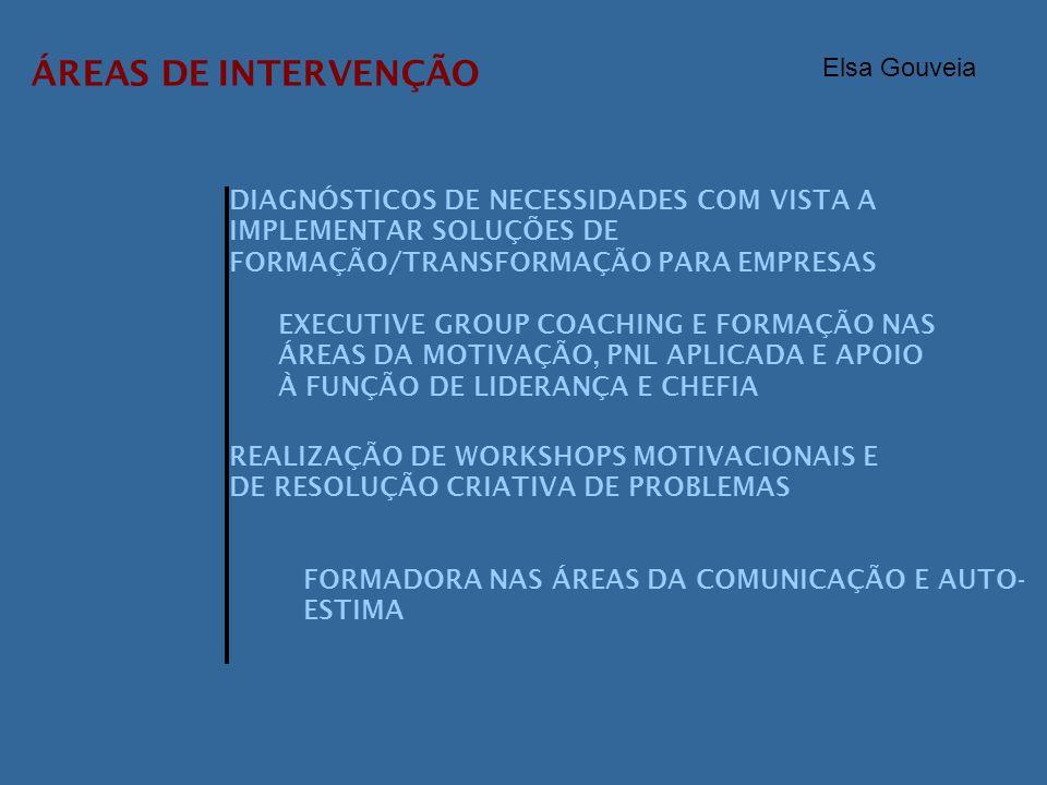 ÁREAS DE INTERVENÇÃO DIAGNÓSTICOS DE NECESSIDADES COM VISTA A IMPLEMENTAR SOLUÇÕES DE FORMAÇÃO/TRANSFORMAÇÃO PARA EMPRESAS EXECUTIVE GROUP COACHING E