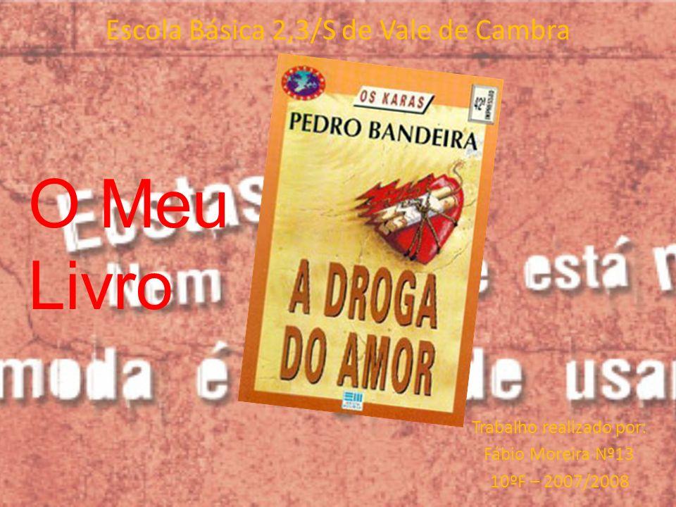 Escola Básica 2,3/S de Vale de Cambra Trabalho realizado por: Fábio Moreira Nº13 10ºF – 2007/2008 O Meu Livro