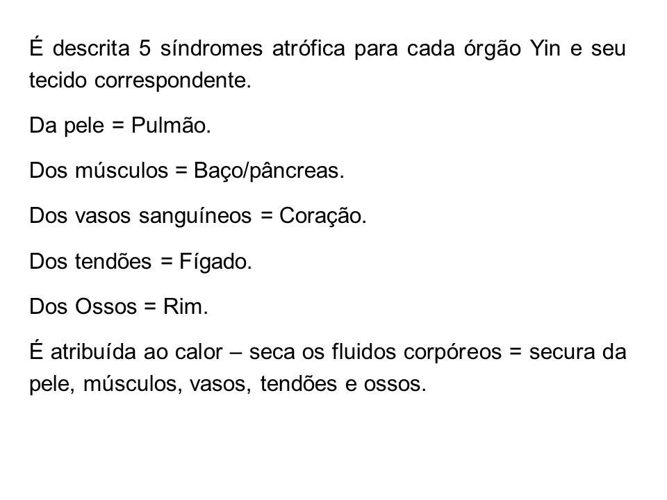 É descrita 5 síndromes atrófica para cada órgão Yin e seu tecido correspondente. Da pele = Pulmão. Dos músculos = Baço/pâncreas. Dos vasos sanguíneos