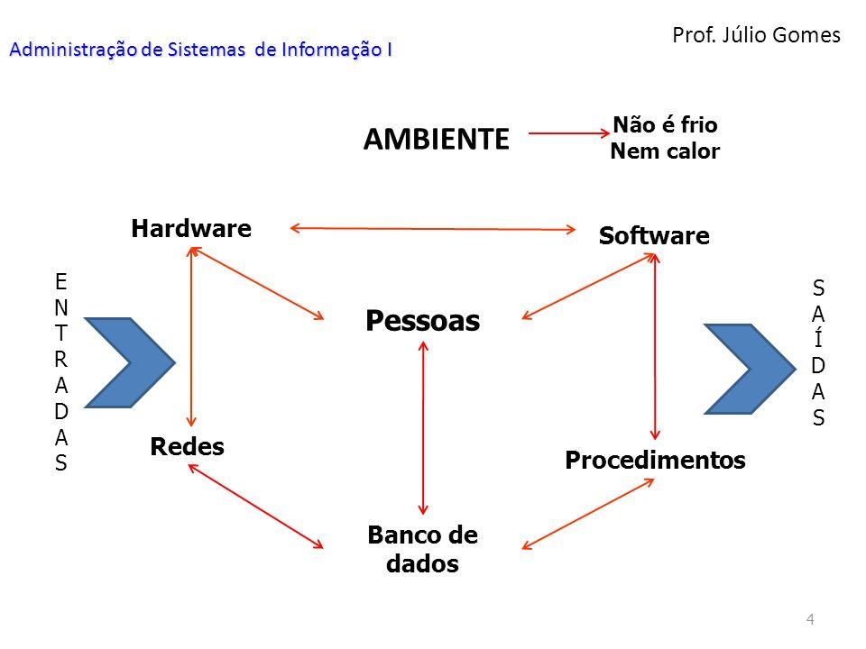 Prof. Júlio Gomes 4 Administração de Sistemas de Informação I AMBIENTE Hardware Não é frio Nem calor Software Pessoas Redes Procedimentos Banco de dad
