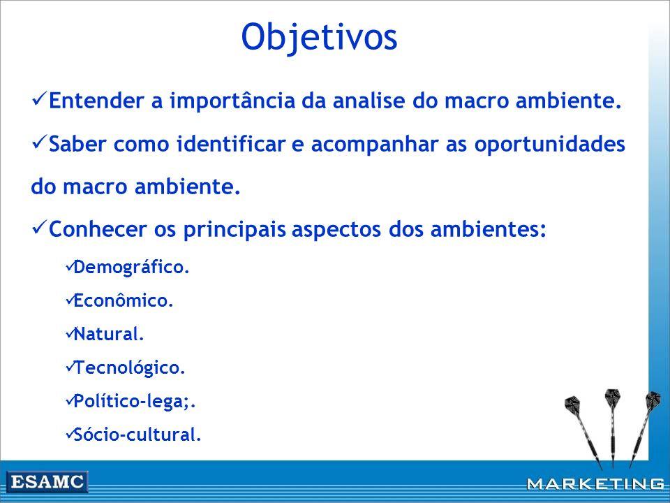 Objetivos Entender a importância da analise do macro ambiente. Saber como identificar e acompanhar as oportunidades do macro ambiente. Conhecer os pri