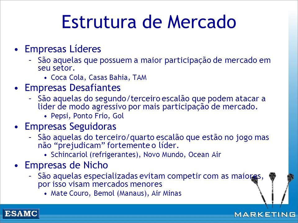 Estrutura de Mercado Empresas Líderes –São aquelas que possuem a maior participação de mercado em seu setor. Coca Cola, Casas Bahia, TAM Empresas Desa