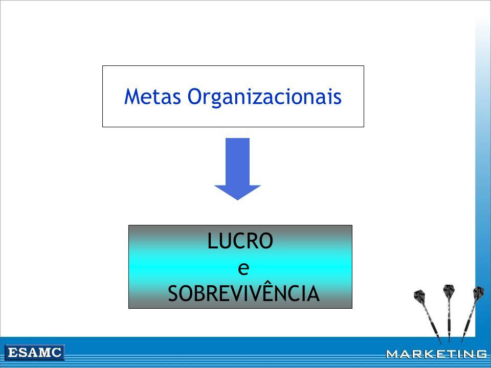 Metas Organizacionais LUCRO e SOBREVIVÊNCIA