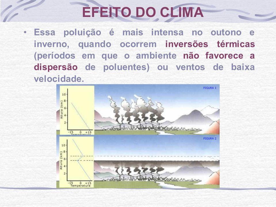 Essa poluição é mais intensa no outono e inverno, quando ocorrem inversões térmicas (períodos em que o ambiente não favorece a dispersão de poluentes)