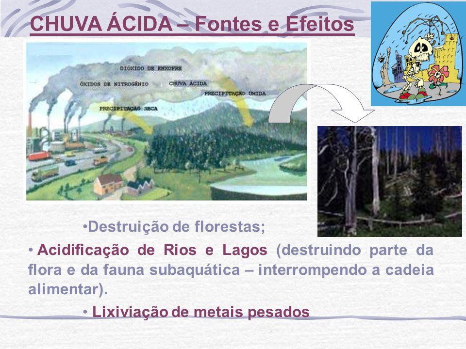 CHUVA ÁCIDA – Fontes e Efeitos Destruição de florestas; Acidificação de Rios e Lagos (destruindo parte da flora e da fauna subaquática – interrompendo