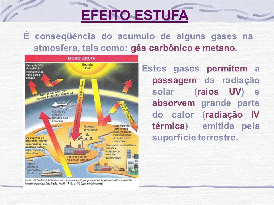EFEITO ESTUFA É conseqüência do acumulo de alguns gases na atmosfera, tais como: gás carbônico e metano. Estes gases permitem a passagem da radiação s