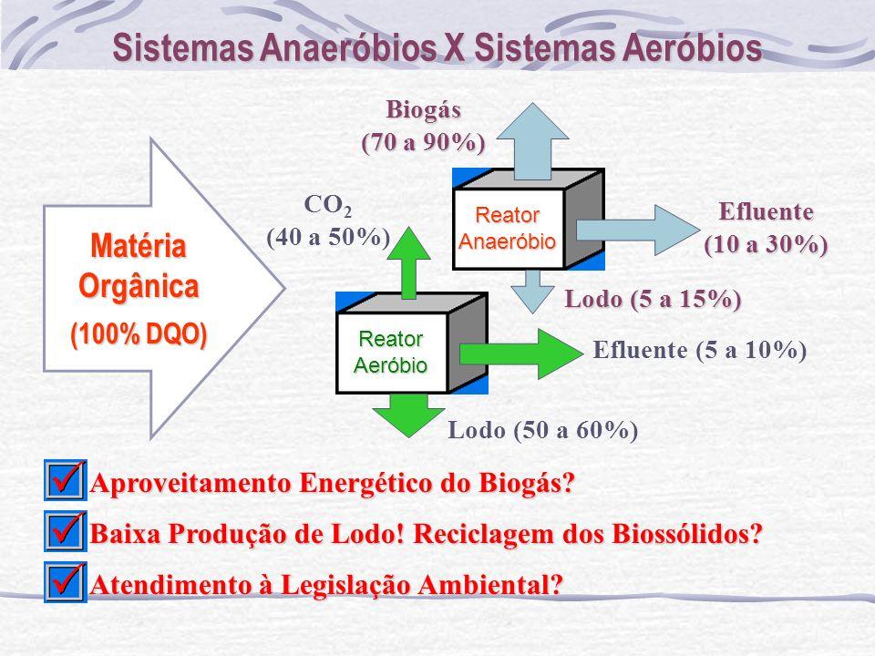 Sistemas Anaeróbios X Sistemas Aeróbios ReatorAnaeróbio Matéria Orgânica (100% DQO) ReatorAeróbio Lodo (5 a 15%) Lodo (50 a 60%) CO 2 (40 a 50%)Biogás