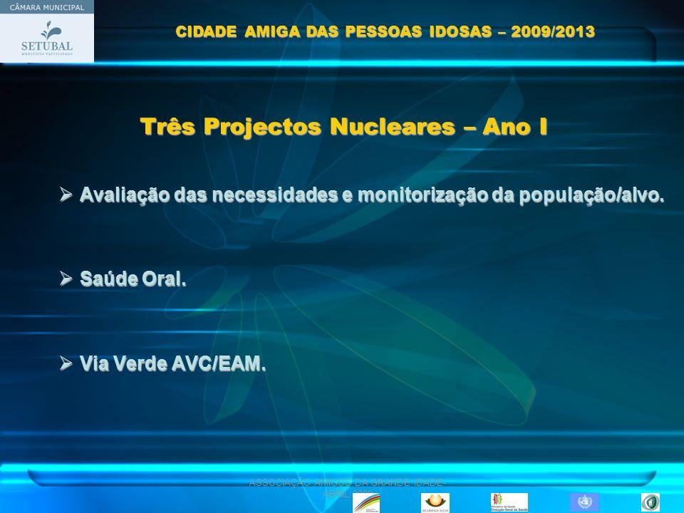 ASSOCIAÇÃO AMIGOS DA GRANDE IDADE- ABRIL 2009 Três Projectos Nucleares – Ano I Avaliação das necessidades e monitorização da população/alvo. Avaliação