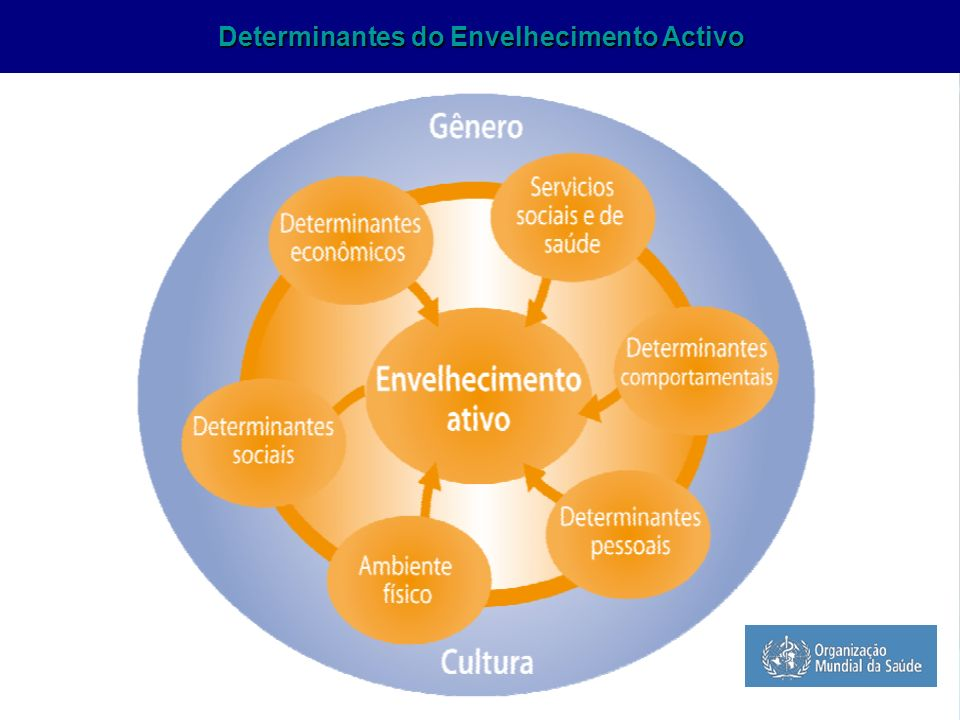 ASSOCIAÇÃO AMIGOS DA GRANDE IDADE- ABRIL 2009 Manutenção da Capacidade Funcional ao longo do Curso da Vida