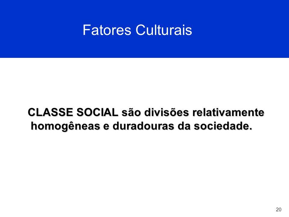 20 Fatores Culturais CLASSE SOCIAL são divisões relativamente homogêneas e duradouras da sociedade.